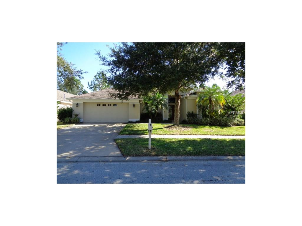18117 Heron Walk Dr, Tampa, FL