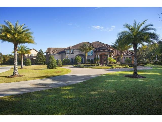 11438 Hammock Oaks Ct, Lithia, FL