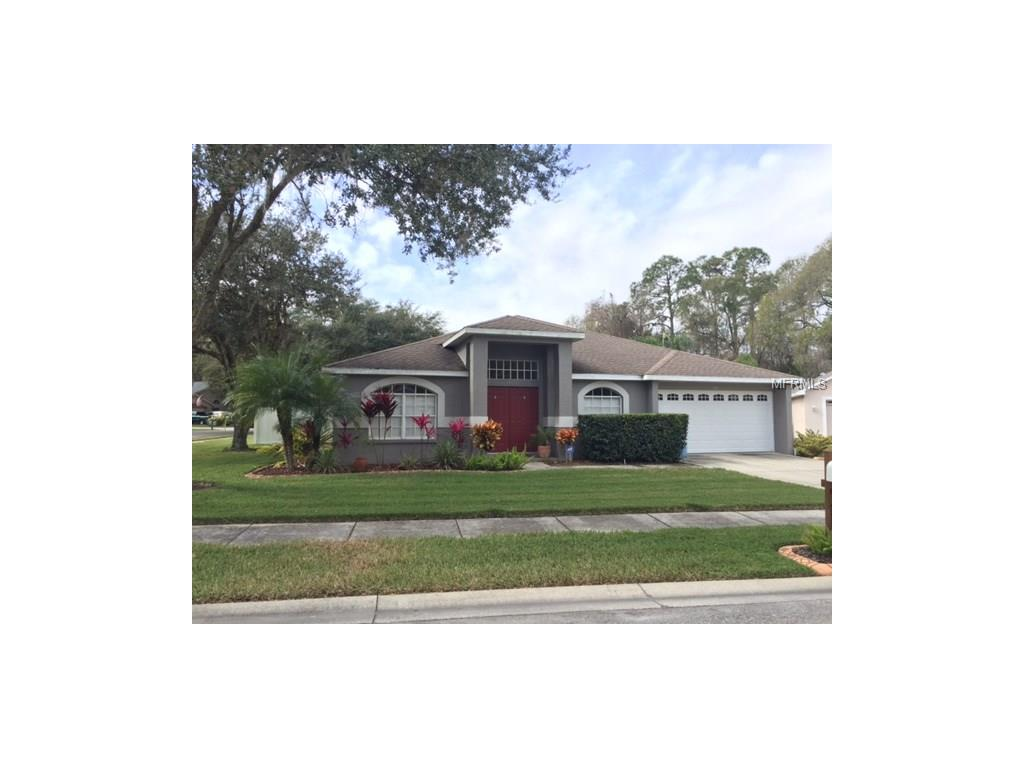 24249 Painter Dr, Land O Lakes, FL