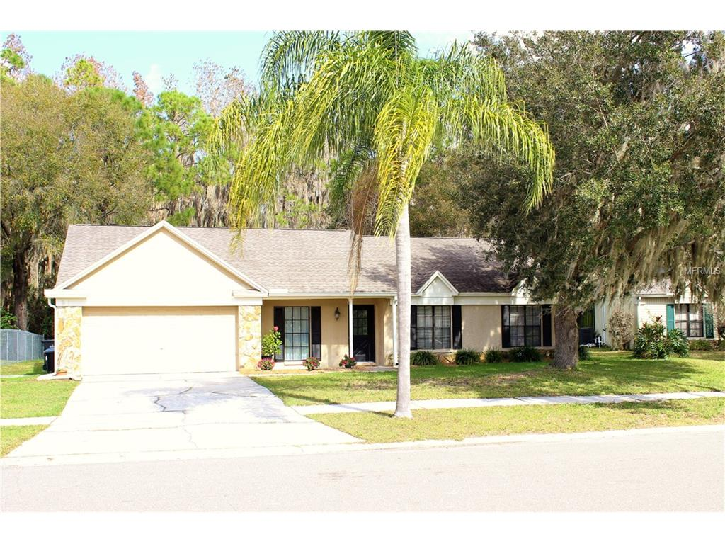 3724 Murray Dale Dr, Valrico, FL