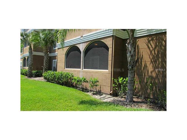 16207 Enclave Village Dr #APT 16207, Tampa FL 33647