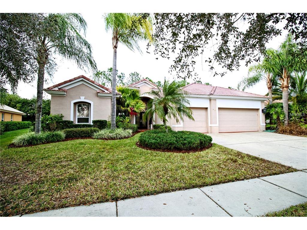 18153 Regents Square Drive, Tampa, FL 33647