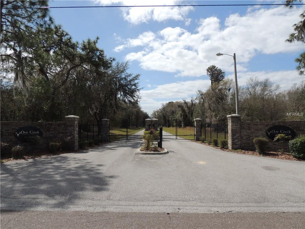 11706 Doe Creek Drive, Lithia, FL 33547