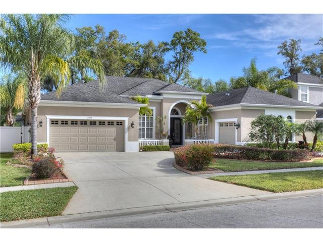 2404 Fountain Grass Dr, Valrico FL 33594