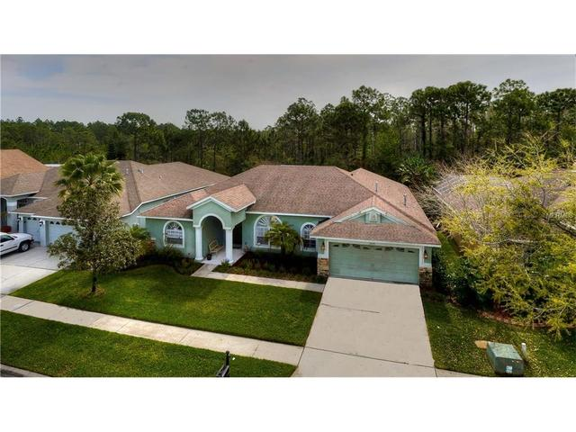 14639 Coral Berry Dr, Tampa FL 33626