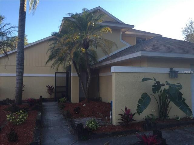 11703 Maple Tree Way, Tampa, FL