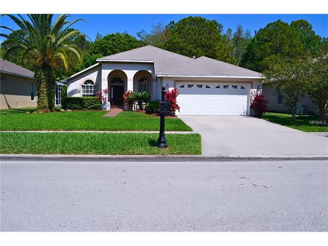12555 Leatherleaf Dr, Tampa FL 33626
