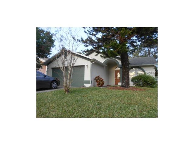 8717 Huntfield St, Tampa, FL 33635