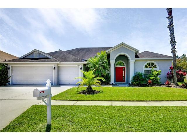 12909 Tar Flower Dr, Tampa FL 33626