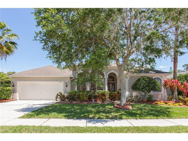 14627 Coral Berry Dr Tampa, FL 33626