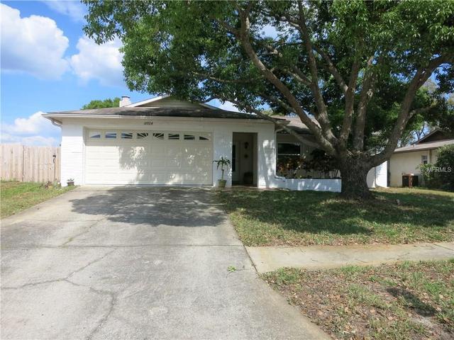 10924 Peppertree Ln, Port Richey FL 34668