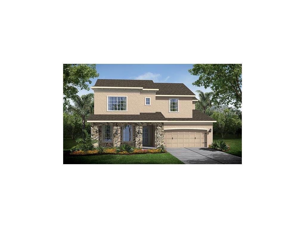 4465 Vermillion Sky Dr, Wesley Chapel, FL