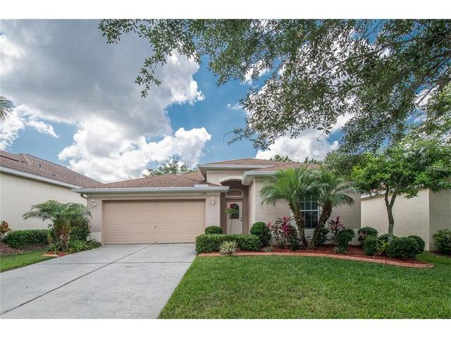 1153 Emerald Hill Way Valrico, FL 33594