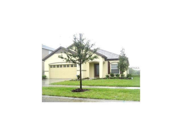 8710 Turnstone Shore Ln, Riverview, FL