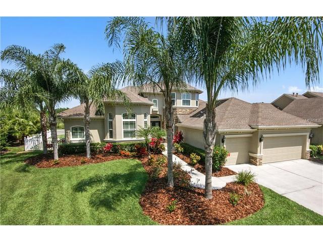 3833 Sorrel Vine Dr, Wesley Chapel, FL