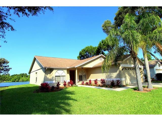 11653 Fox Creek Dr, Tampa, FL