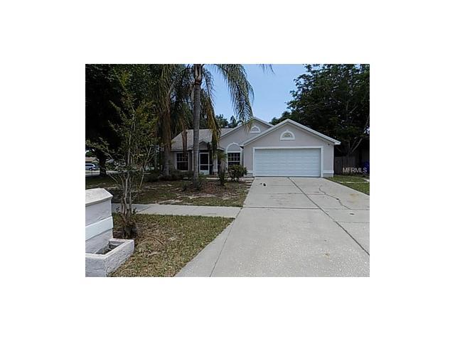 10302 Salisbury St, Riverview, FL
