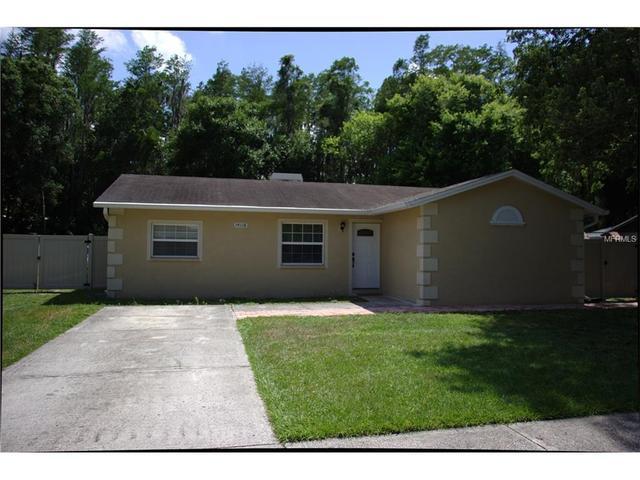 14116 Arbor Hills Rd, Tampa, FL