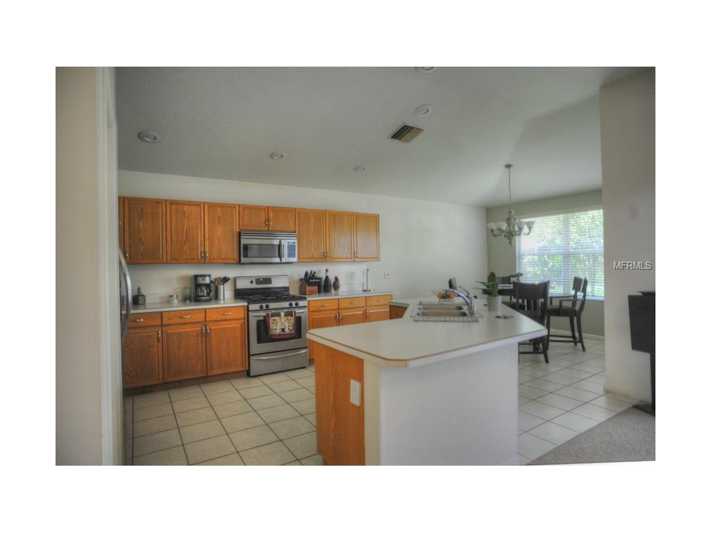 4509 Roundview Court, Land O Lakes, FL 34639