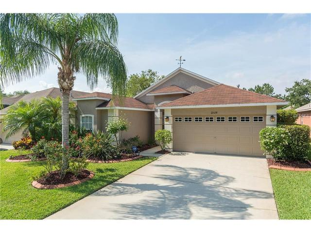 12528 Deerberry Ln Tampa, FL 33626