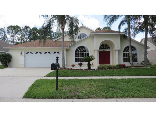 9215 Rockrose Dr, Tampa, FL