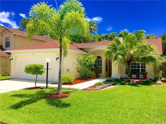 11118 Clayridge Dr, Tampa, FL