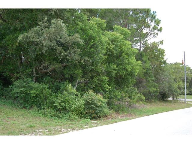 11616 Trumbull Dr, Spring Hill, FL 34609