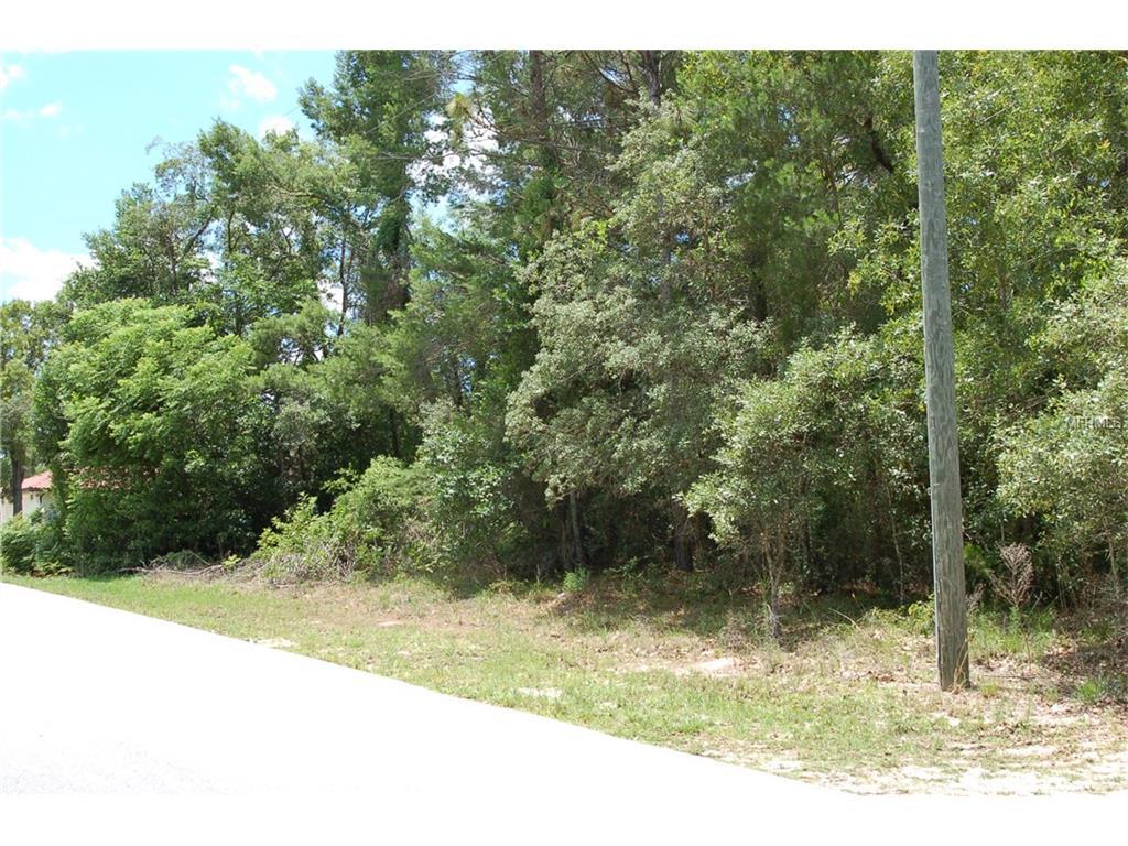 11616 Trumbull Drive, Spring Hill, FL 34609