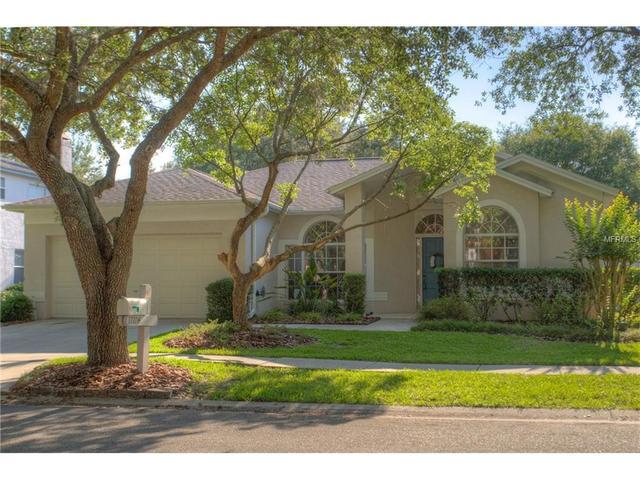 17704 Hampshire Oak Dr, Tampa FL 33647