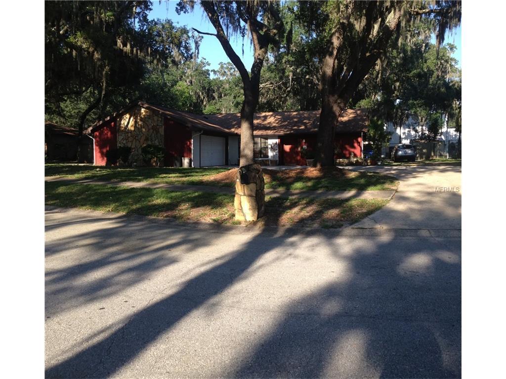 3403 Bent Oak Street, Valrico, FL 33596