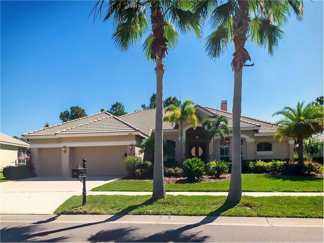 11903 Marblehead Dr, Tampa FL 33626