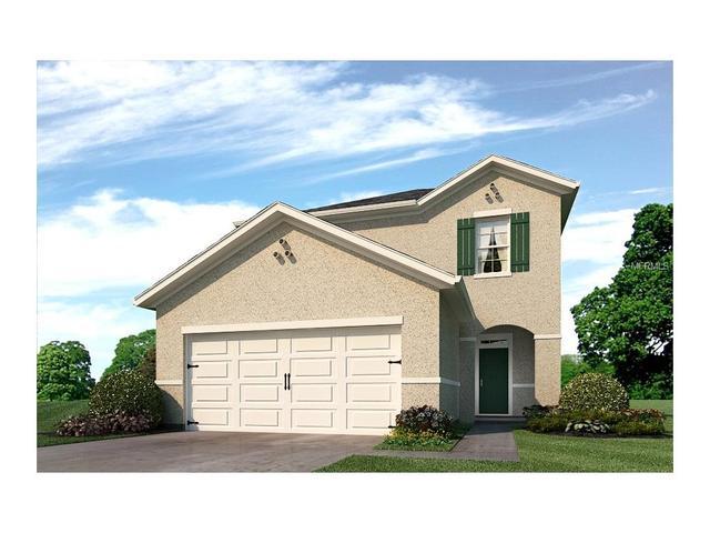 10122 Hawk Storm Ave, Tampa, FL 33610