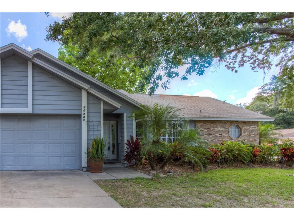10448 Tara Drive, Riverview, FL 33578