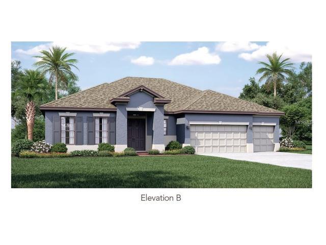 10644 Mistflower Ln, Tampa, FL 33647