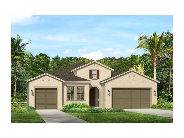 18105 Leafmore St, Lutz, FL 33548