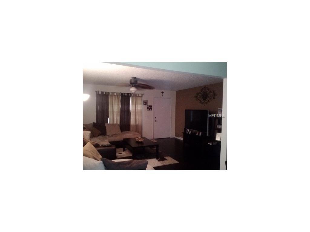 4233 Truman Drive, Seffner, FL 33584