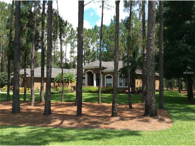 417 Pine Bluff Dr, Lutz, FL 33549