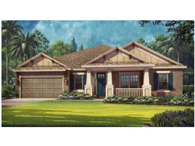 26735 Fiddlewood Loop, Wesley Chapel, FL 33544