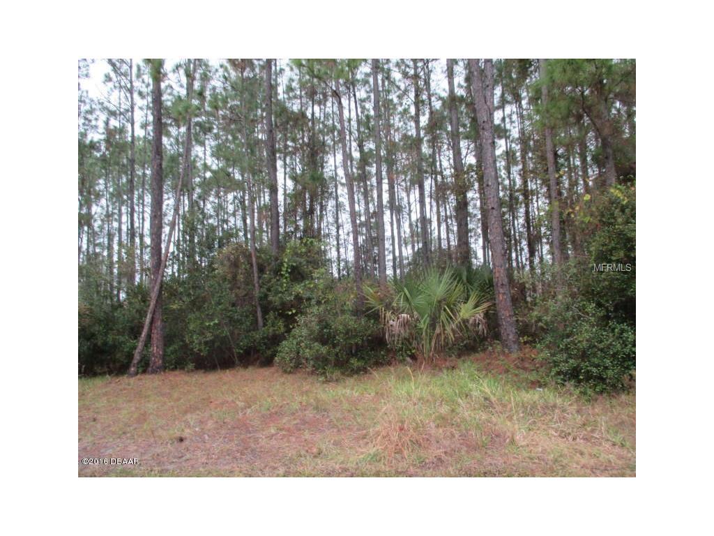 37 Squash Blossom Trail, Palm Coast, FL 32164