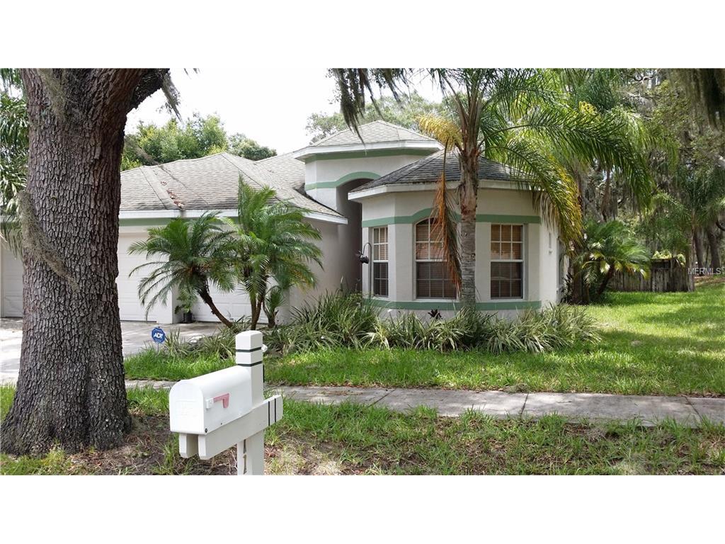 11126 Bridgecreek Drive, Riverview, FL 33569