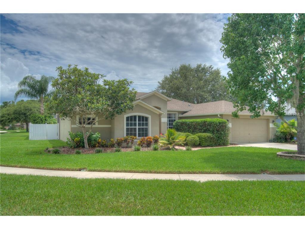 1303 Wyndham Lakes Drive, Odessa, FL 33556