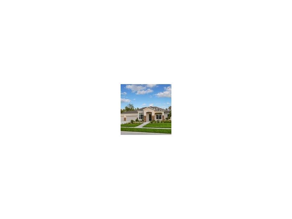 14101 Bassingthorpe Dr, Spring Hill, FL 34609