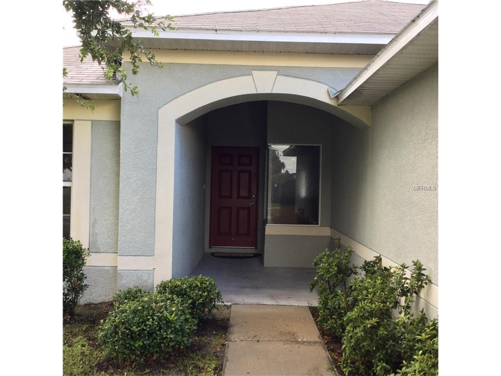 11738 Lynmoor Drive, Riverview, FL 33579