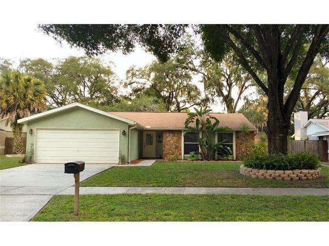 5341 Black Pine Dr, Tampa, FL 33624