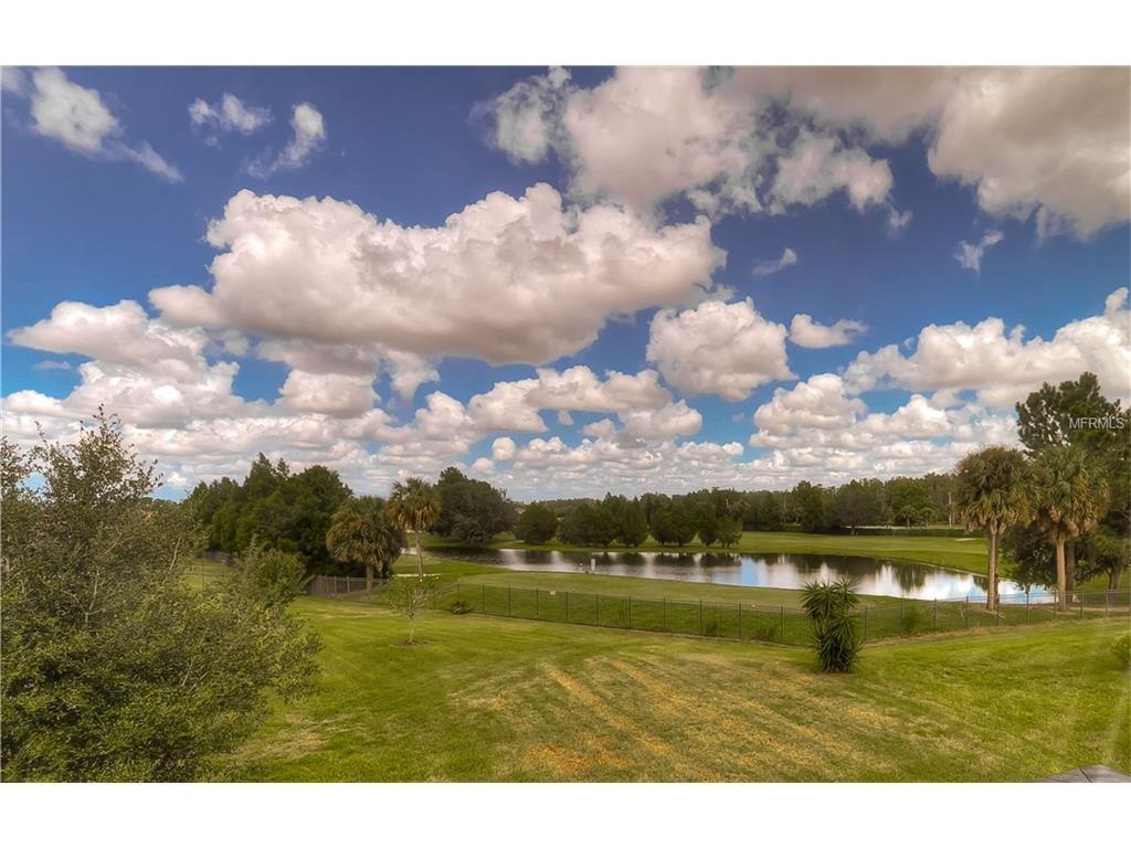 3821 Evergreen Oaks Drive, Lutz, FL 33558