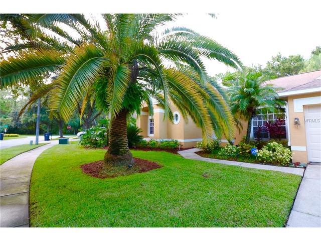 Loans near  Ayrshire Dr, Tampa FL