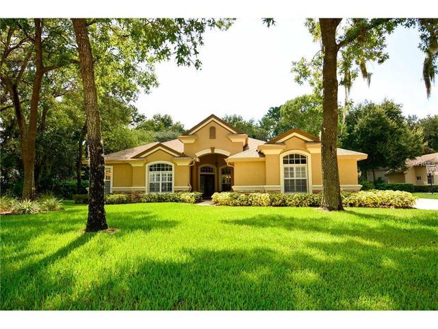 6125 Audubon Manor Blvd, Lithia, FL 33547