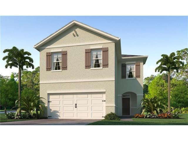 10204 Hawk Storm Ave, Tampa, FL 33610