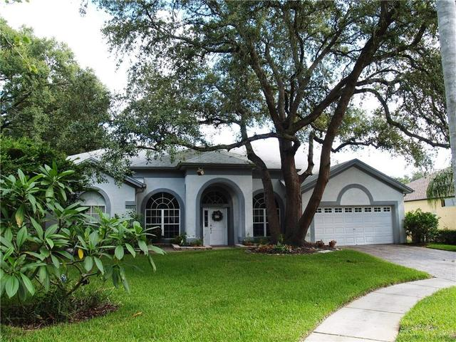 4411 Round Lake Ct, Tampa, FL 33618