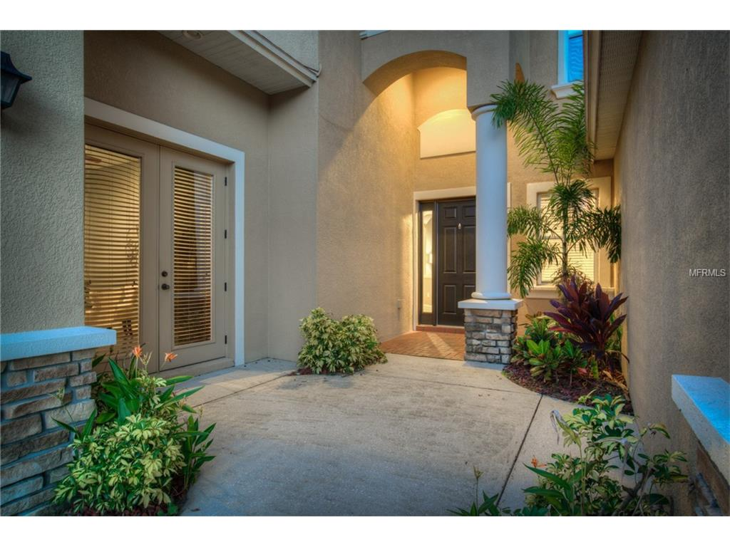 8105 Hampton Glen Drive, Tampa, FL 33647